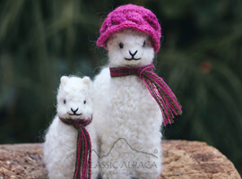 Needle Felted My Mother Baby Alpaca