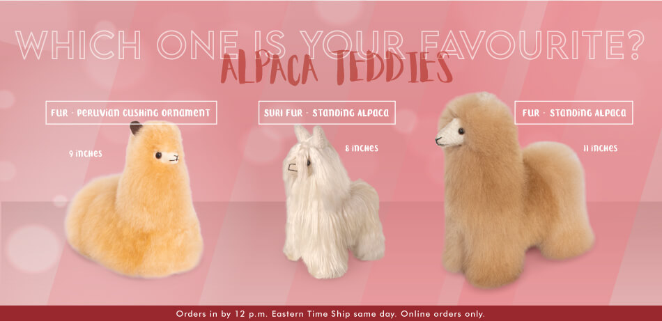 Which one is your favourite? | Alpaca Teddies