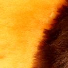 Peach-Various ALPACA Fur - Cotton - Kandi Guinea Pig Ornament 12 inches