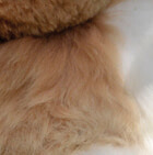 Various BABY ALPACA Fur Andean Ornament
