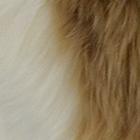 Natural-Tan  PREMIUM Baby Suri Fur Fuzzy Slippers