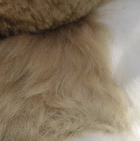 "Various PREMIUM Baby Alpaca Fur - Teddy Bear 10"""