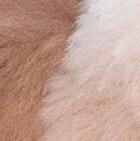 """Various Alpaca Fur-Standing Alpaca 12"""""""