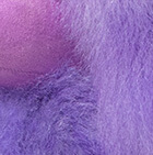 """Purple Haze Baby Alpaca Fur-Poodle Dog 13"""""""