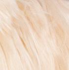 "Various BABY Alpaca Suri Fur-Standing Alpaca 9"""