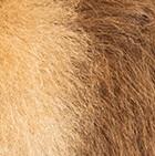 "Various Baby Alpaca Fur-Pig Ornament 7"""