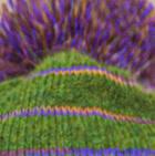 Green Mlge Brushed Striped Beret Alpaca Hat