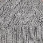 Lt. Grey Snake Cable Alpaca Hat