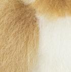 "Honey-White Baby Alpaca Fur - Owl Ornament 9"""